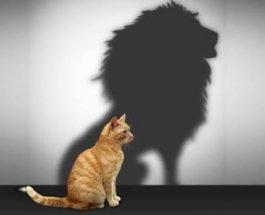 Sekali Singa Tetaplah Singa