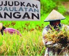 Kedaulaatan Pangan dan Keseriusan Pemerintah dalam Mencapainya